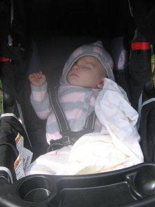 Asleep in the stroller